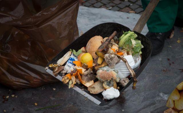 Tudi v črnih zabojnikih se znajde veliko hrane. FOTO: Miro Majcen/Snaga