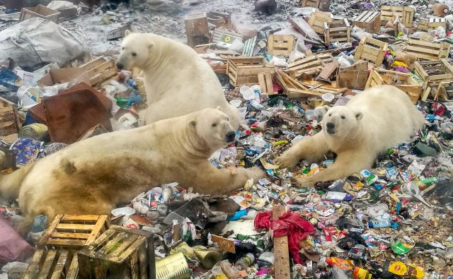Poročilo je podalo najcelovitejši znanstveni pogled na povezavo med zemljo, na kateri živimo, in globalnim segrevanjem.<br /> FOTO: AFP