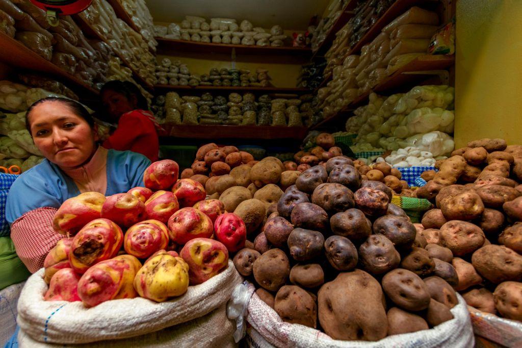 FOTO:Če presekaš Perujca, bo namesto krvi iz njega pritekel krompir