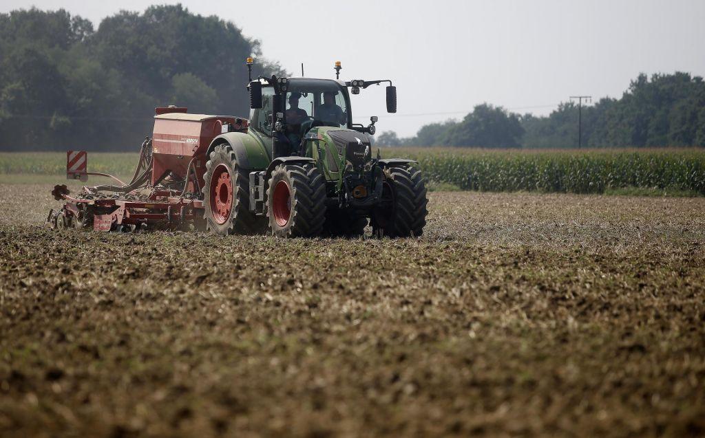 Intenzivno kmetijstvo krivo za padec biotske pestrosti