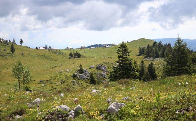 Mala Planina FOTO: PZS
