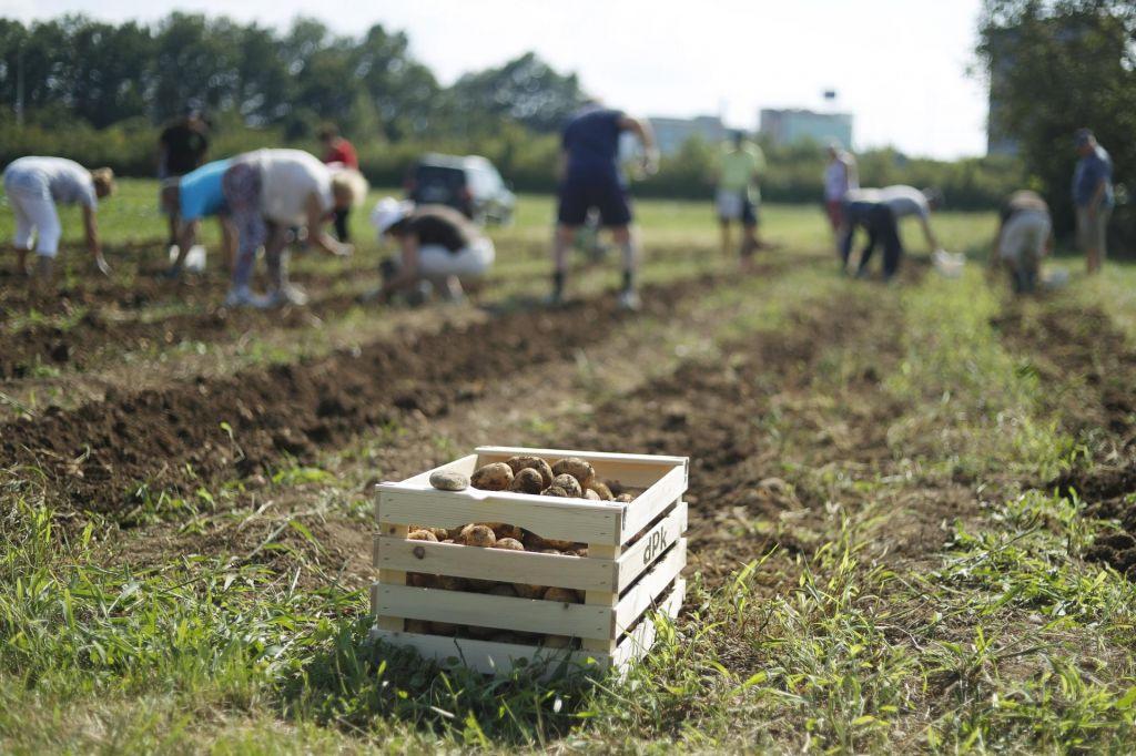 Sloveniji več evropskega denarja za kmetijstvo in podeželje