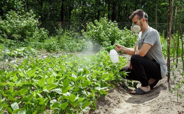 Eden od ciljev je, da bi se neprofesionalno lahko uporabljali le pesticidi, registrirani v ekološki pridelavi. FOTO: Shutterstock