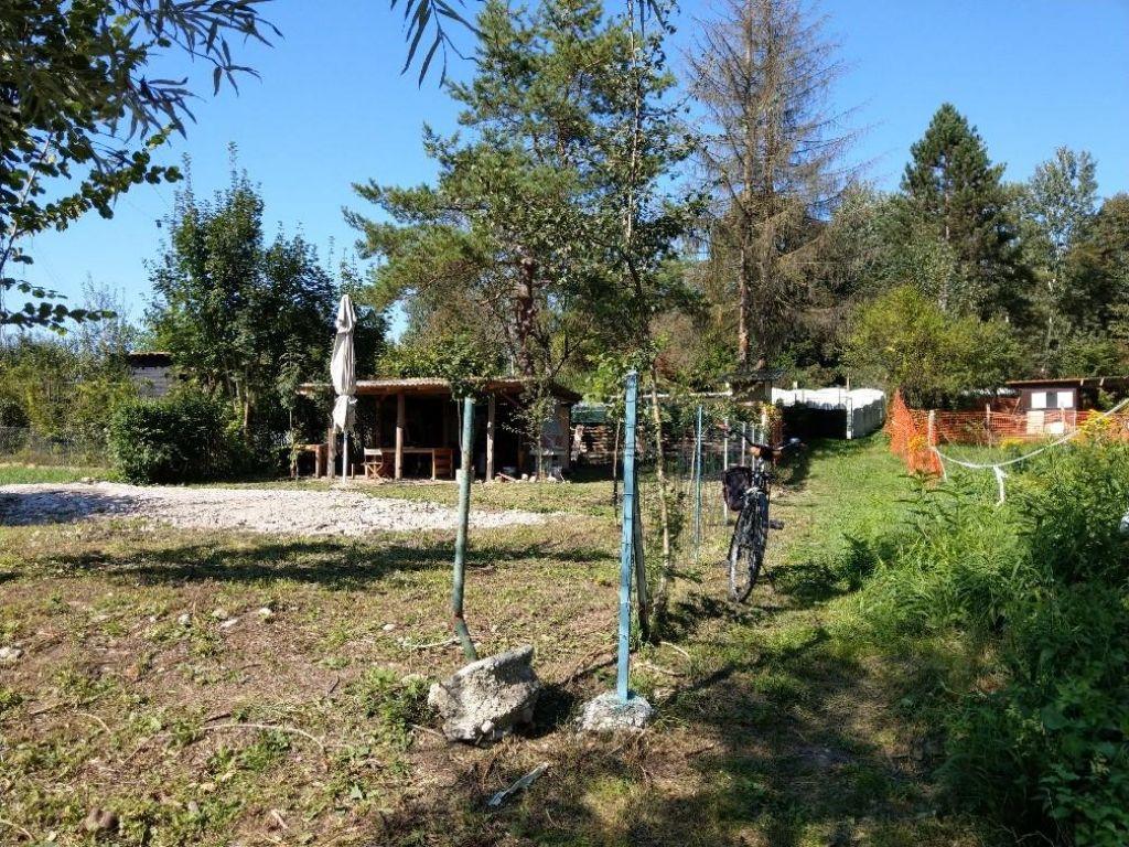 FOTO:Vrtičke v Črnučah bodo spet odstranjevali