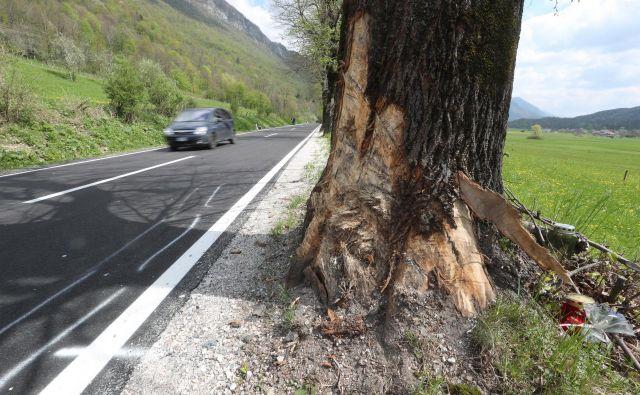Voznik je s ceste zapeljal v drevo (simbolična fotografija). FOTO: Dejan Javornik/Slovenske novice
