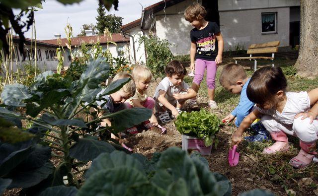 Danes so razmere drugačne, kot so bile v prejšnjih časih, ko so otroci odhajali k starim staršem na deželo, k staršem v delavnice, delat v vrtove, so se zaposlili z delom na kmetih … Foto Blaž Samec/Delo