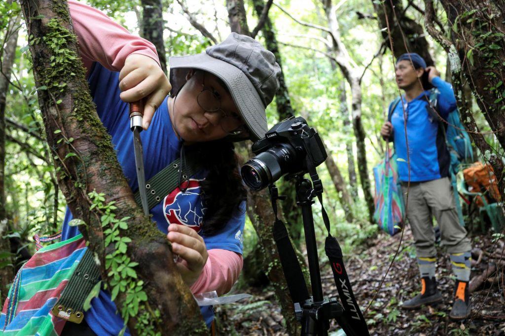 FOTO:Tajvanski lovci na redke vrste rastlin