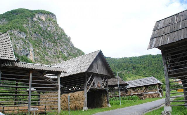 Etnološka stroka bi morala v bodoče narediti več, da se nam slovenski kozolec ohrani – če ni več potreben v kmetijstvu, bi si bilo treba zanj izmisliti novo funkcijo. Foto Vojko Zakrajšek