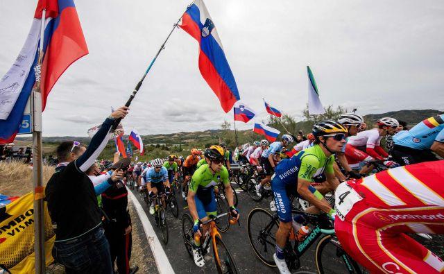 Slovenski kolesarji so se na 258,2 km dolgi progi prebijali mimo številnih navijačev, na koncu so se morali zadovoljiti s 6. mestom Primoža Rogliča. FOTO: Vid Ponikvar/Sportida