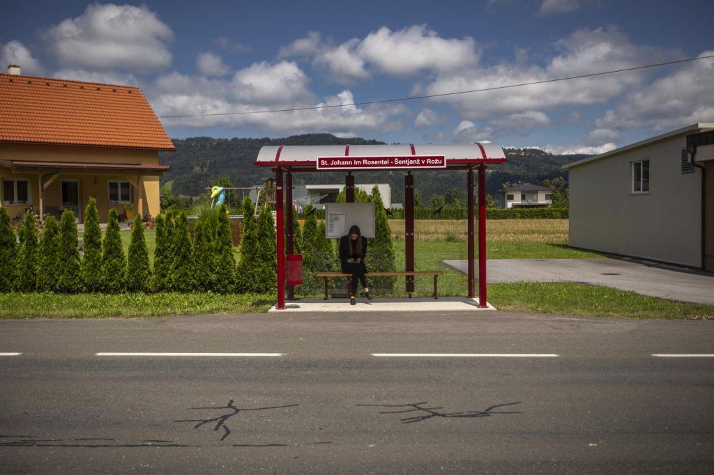 Slovenska manjšina kot folkloristični okrasek