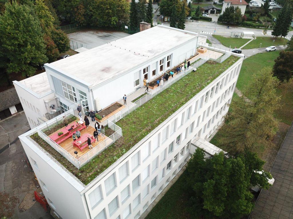 FOTO:Kaj vse se lahko zgodi na eni zeleni strehi