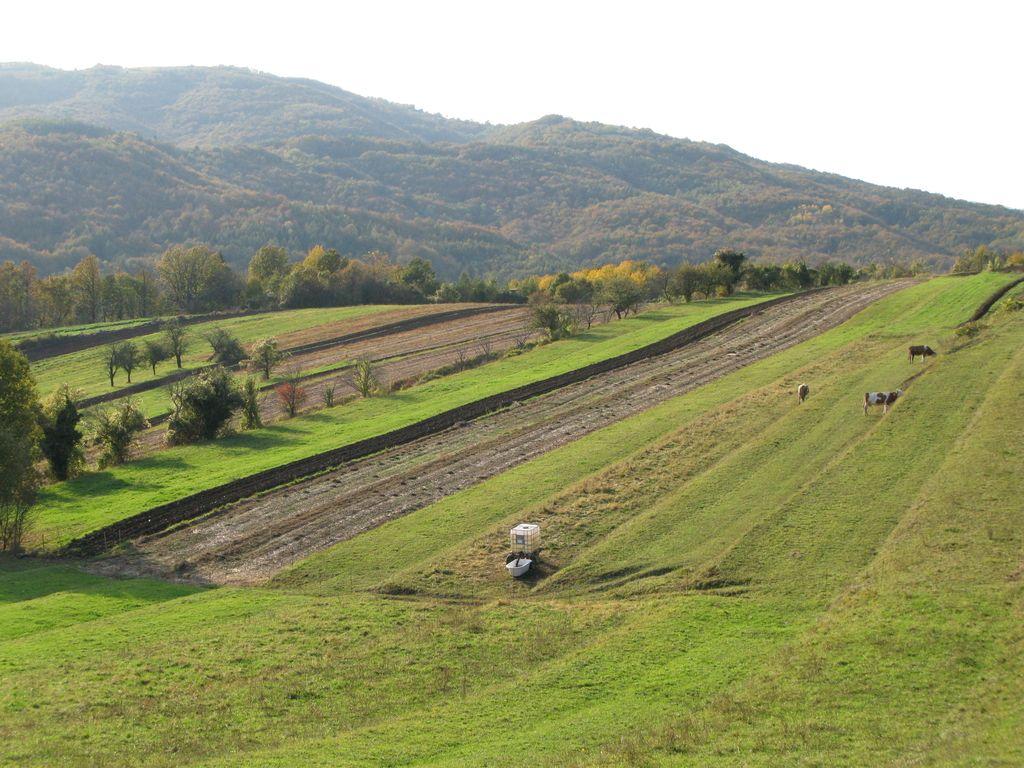 Odpustki za kmetijska zemljišča