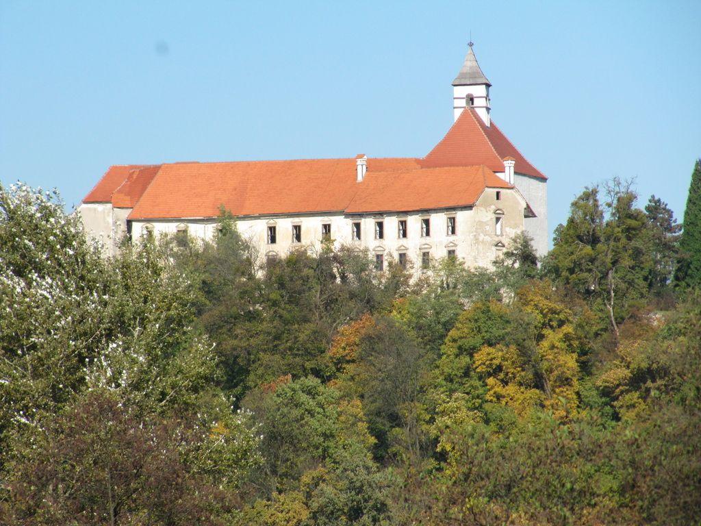 Do morebitnega kupca gradu Borl zdaj z neposrednimi pogajanji