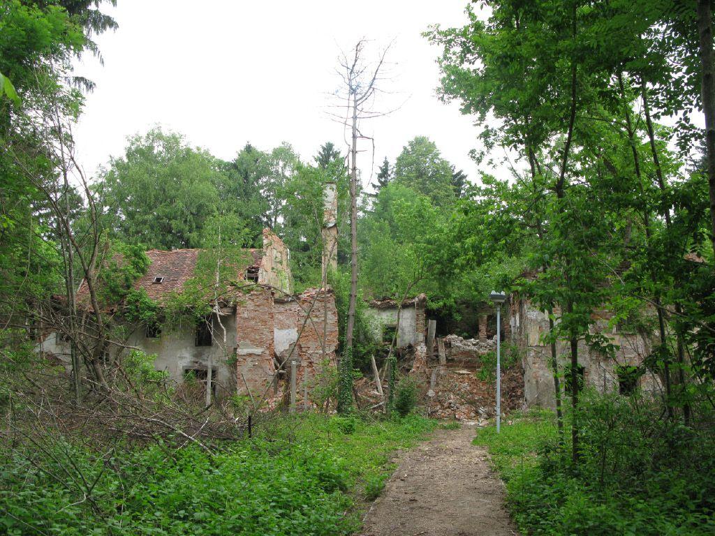 Za dvesto stanovanj bi posekali cel hektar gozda sredi Viča