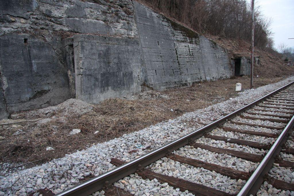 Izgradnja železnice do Kočevja pod vprašajem