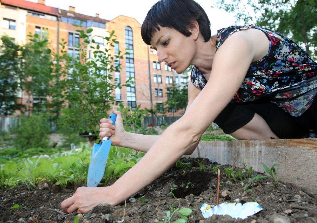 Hrana z domačih vrtov blaži udarce krize