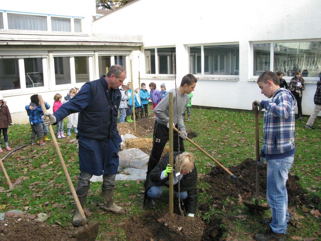 Zasaditev treh sadovnjakov v šolskih ekovrtovih