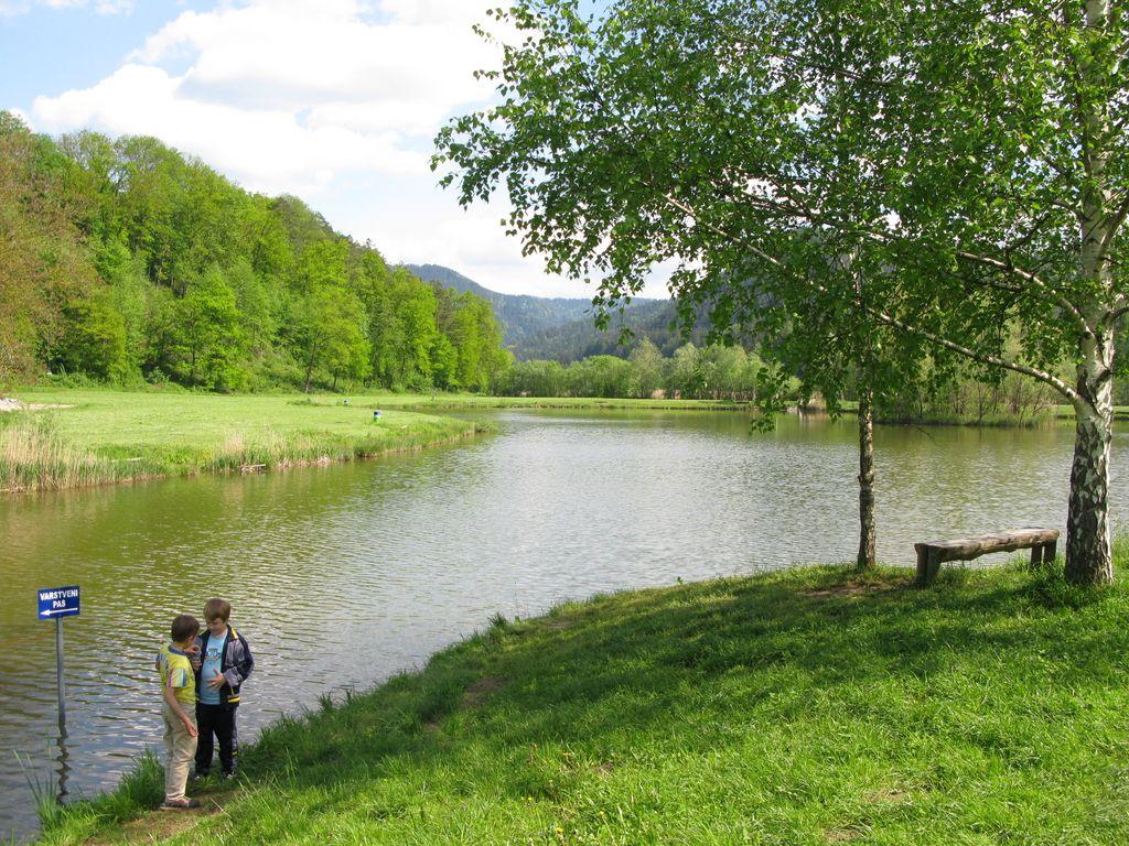 Občine širitvi Nature 2000 načeloma ne nasprotujejo