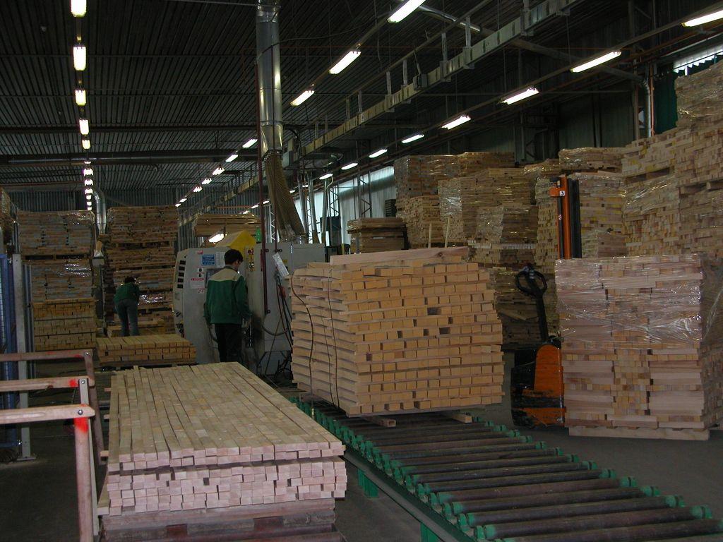 Novogoričani zahtevajo omejitev izvoza hlodovine