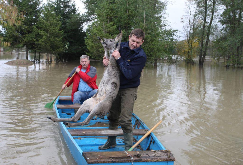 Razsežnost poplav tudi posledica avstrijskih elektrarn