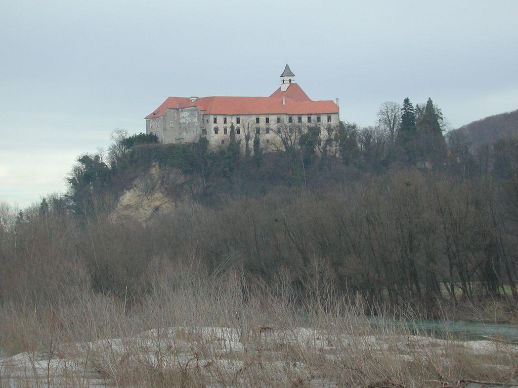 Četrti poskus: grad Borl bo spet naprodaj