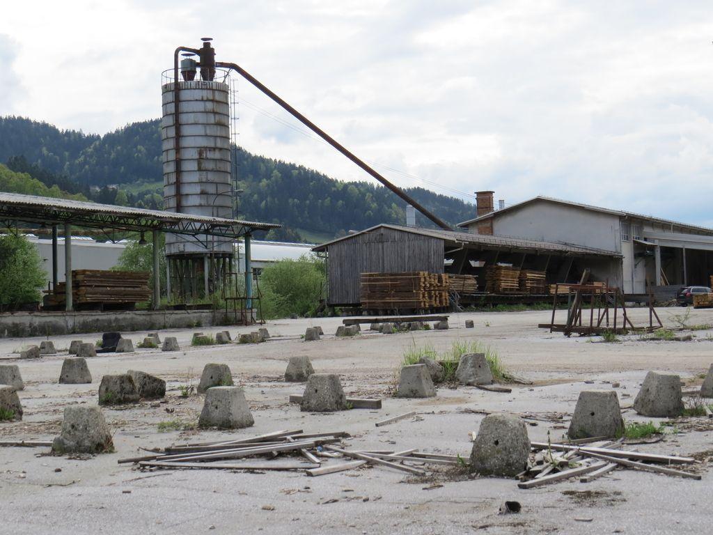 Koroška bi z Ligno oživljala lesno industrijo