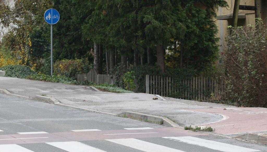 Evropski denar za neudobno kolesarjenje