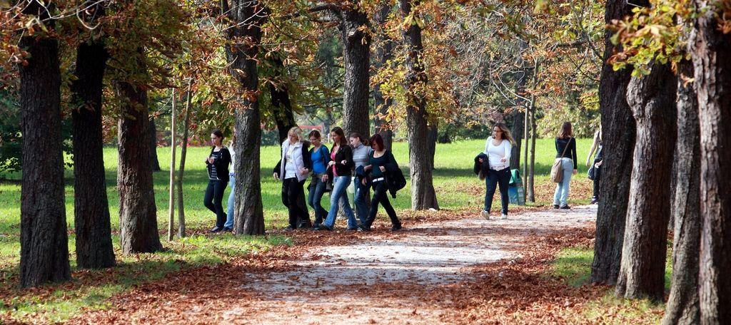 Zelena prestolnica Evrope zatira zelenje z glifosatom